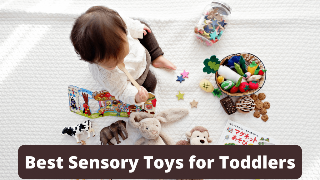 Best Sensory Toys for Toddlers